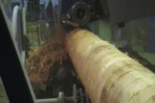 Процесс окорки бревен на окорочном станке ОС–400